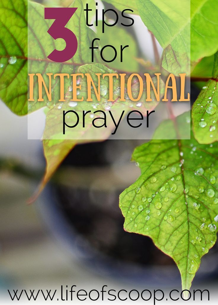 Do you struggle to pray intentionally? The Lord longs to meet with His children through prayer. Read here for three tips to learn to pray with purpose!