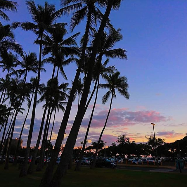 Awesome Photo credit from @paaau.hanasu. . この日だけの sunset⍤🤍💜 唯一無二ー! 毎日みたいなぁ🥺 . . #oahuhawaii #honoluluhawaii #genic_hawaii #instahawaii #alohagenic #Oahu #genic_beach... 🔥🔥🔥Hawaii Luau Company- Hawaii's Premiere Corporate Event, Luau, Wedding and Entertainment Company. www.hawaiiluaucompany.com #hawaiiluaucompany #huakailuau #huakai #mauiweddingplanner #lahainaluau #mauiweddingphotographer   #mauiweddingvows  #hawaiiweddingvows #hawaiiwedding #hawaiiweddings  #hawaiiweddingplanner #hawaiiwe