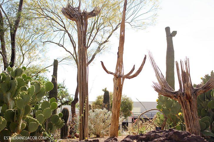 2c1f1b655b20ae01cea667f48019d959 - Ethel M Chocolate Factory And Botanical Cactus Gardens Las Vegas