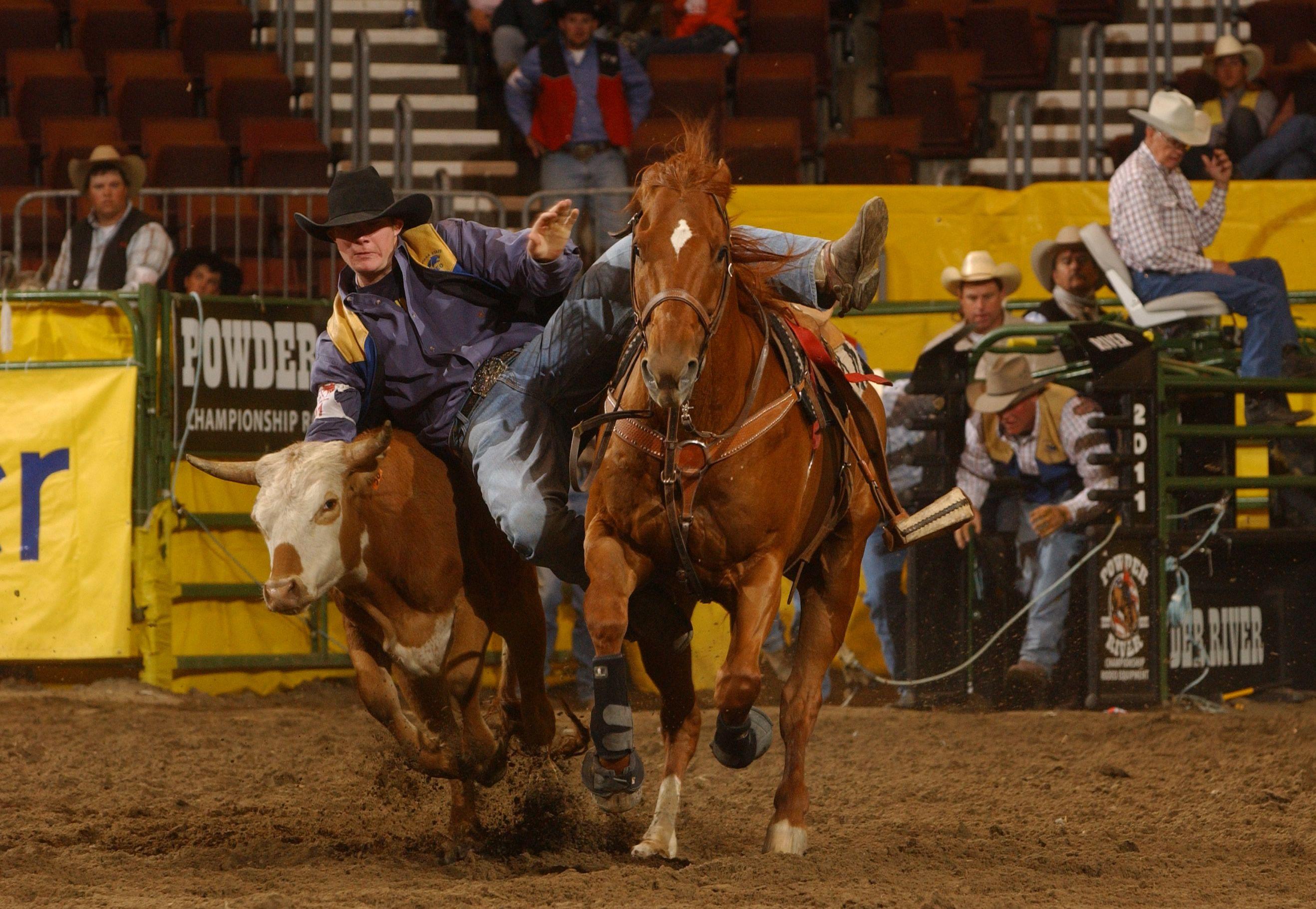 2013 Spring Rodeo Bobcat Rodeo Montana State