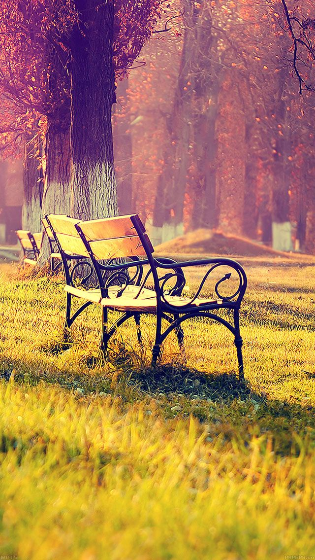 Park Chair Autumn Landscape Park Landscape Fall Wallpaper Garden romantic park bench background