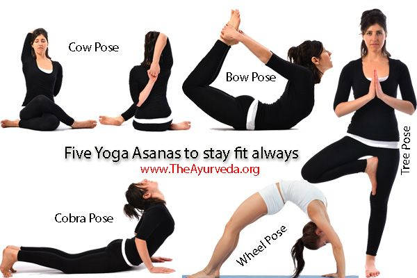 These Five Types Of Yoga Asanas If Performed Daily A Person Can Remain Fit And