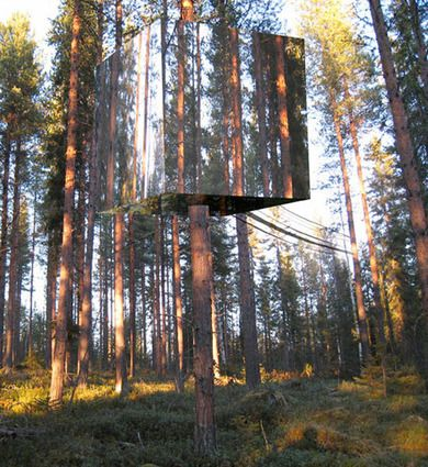 mirrored the key to the ultimate hidden tree house lots of mirrors a mirror