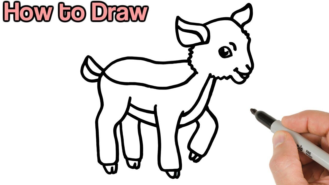 How To Draw A Goat Kid Cute Baby Animals Drawings For Beginners Draw Cute Baby Animals Draw Animals For Kids Baby Animal Drawings