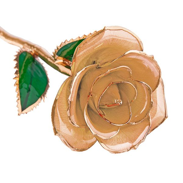 Butterscotch 24kt Gold Dipped Rose Steven Singer Jewelers IHateStevenSinger