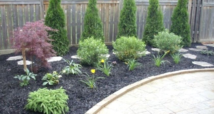 No Maintenance Front Yard Landscaping Low Al Created Web Free