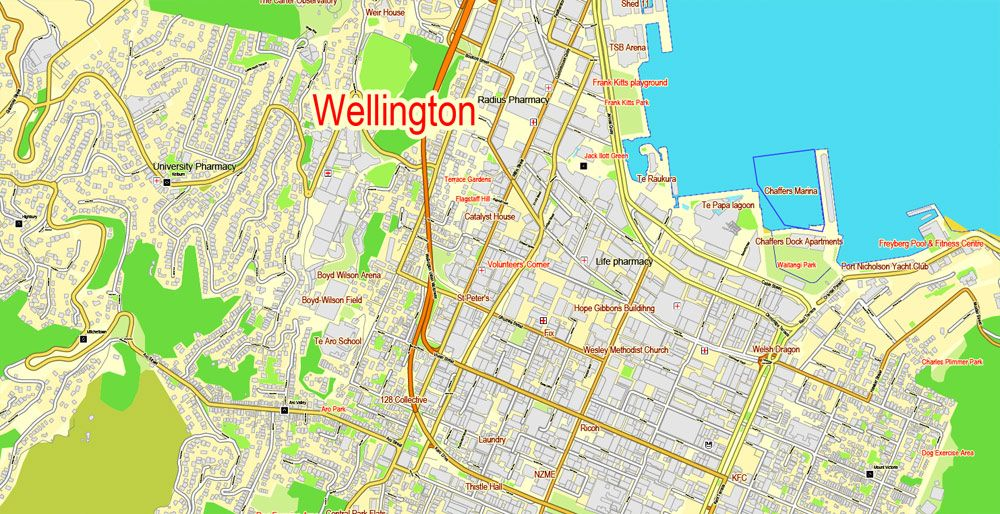 Map Wellington New Zealand.Wellington Printable Map New Zealand Exact Vector Street City Plan