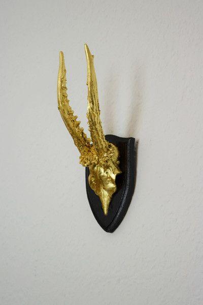 Wanddeko Geweih wanddeko geweih vergoldet horn and amazon