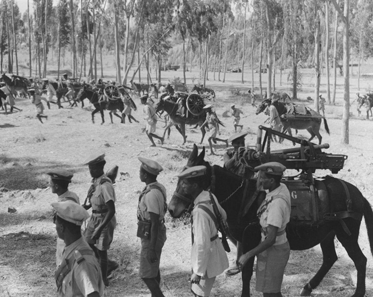 Anti Worlds Ethiopian Troops Transport Captured