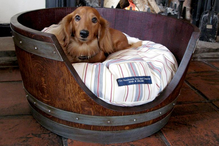 10 Pinterest Dog Bed Hacks That Are So Cool They Ll Effectively