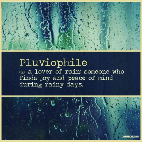 Memes And Rainy Pluviophile A Lover Of Rain Someone Who Finds Joy And Peace Of Mind During Rainy Days The Rainy Day Quotes Cool Words Rain Quotes