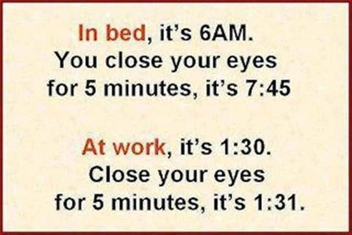 True Story Work Quotes Funny Fun Quotes Funny Funny Joke Quote