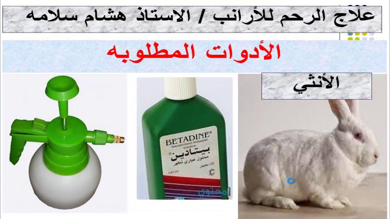 علاج التهاب الرحم عند الارانب وعدم قبول الانثي التلقيح Soap Bottle Hand Soap Bottle Soap
