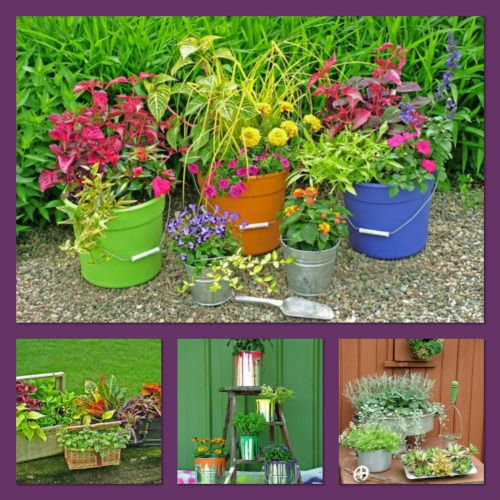 Gardening With Inexpensive Containers Can Save You Money