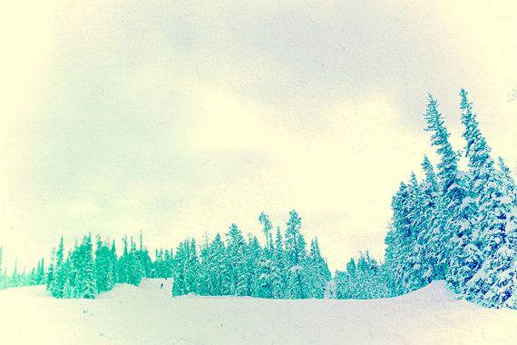 Winter photography, minimalist nature, sea foam green art, nature art print, pine tree photography, snow, Winter Pine