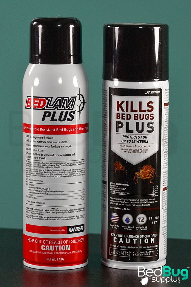 Protect Against Bed Bugs With Our Long Lasting Residual