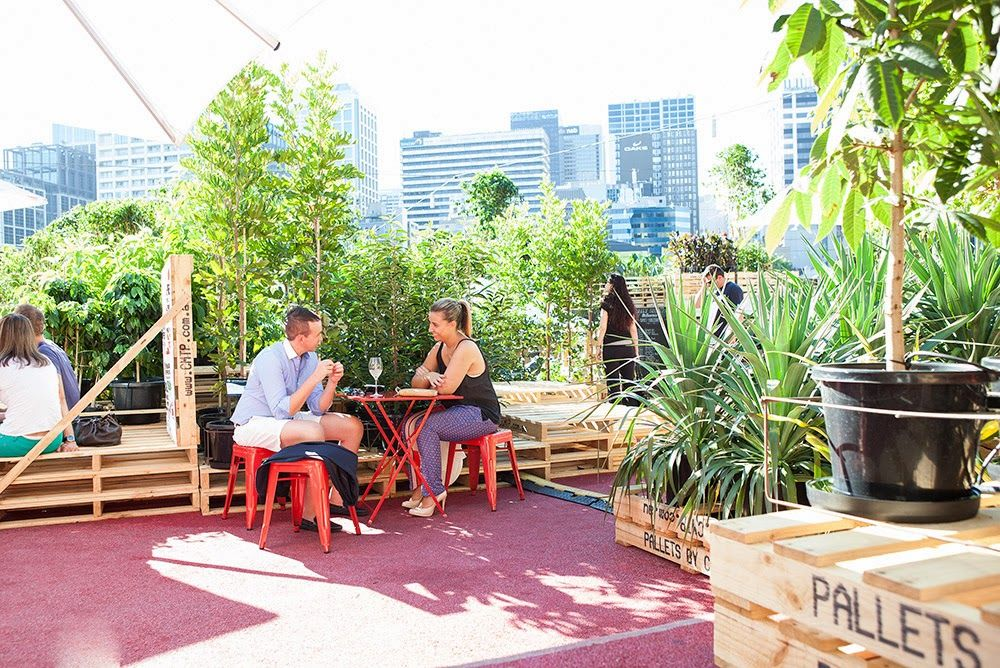 An urban garden oasis! The Urban Coffee Farm & Brew Bar