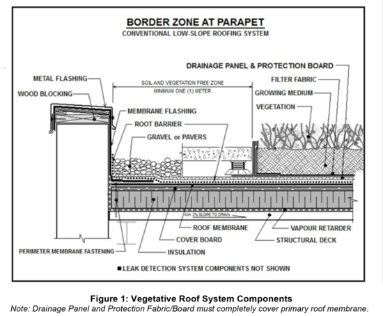 Extensive Vegetated Roof System Thickness Concrete Roof