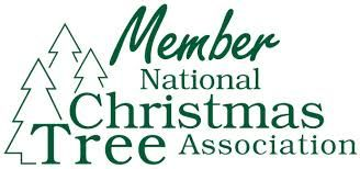 Image Result For Christmas Tree Graphic Logo National Christmas Tree Christmas Tree Graphic
