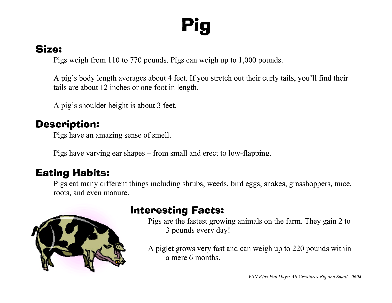 Funny Pig Facts