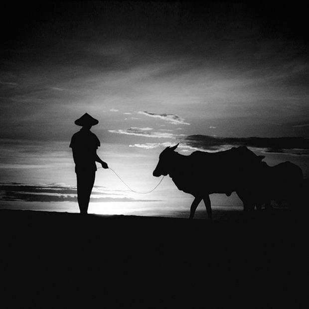 белый пирс фото черно белые пейзажи фото Foto-Tur # ...