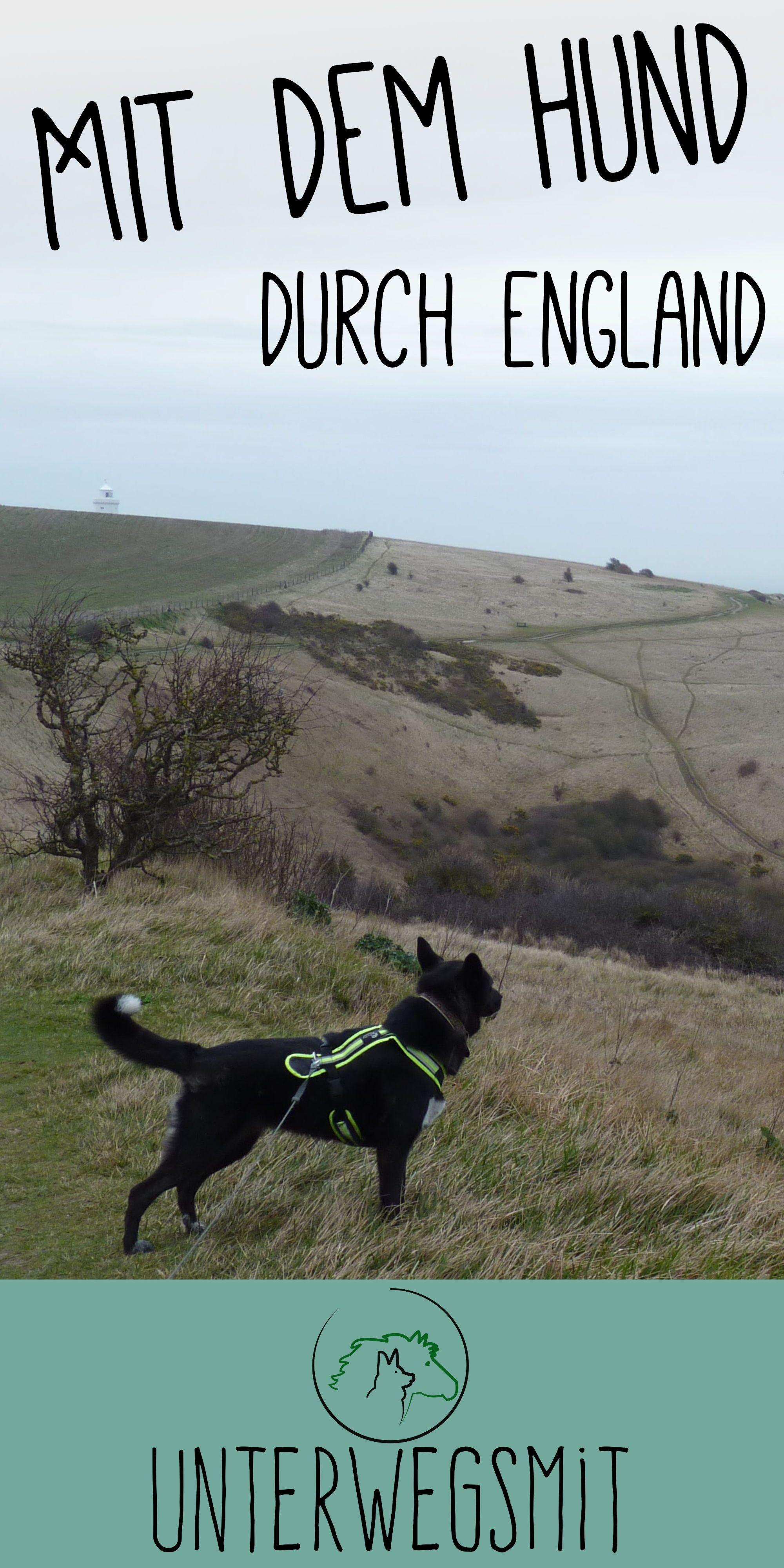 Unterwegs Mit Dem Hund Durch England Hunde Urlaub Mit Hund Hund Reisen