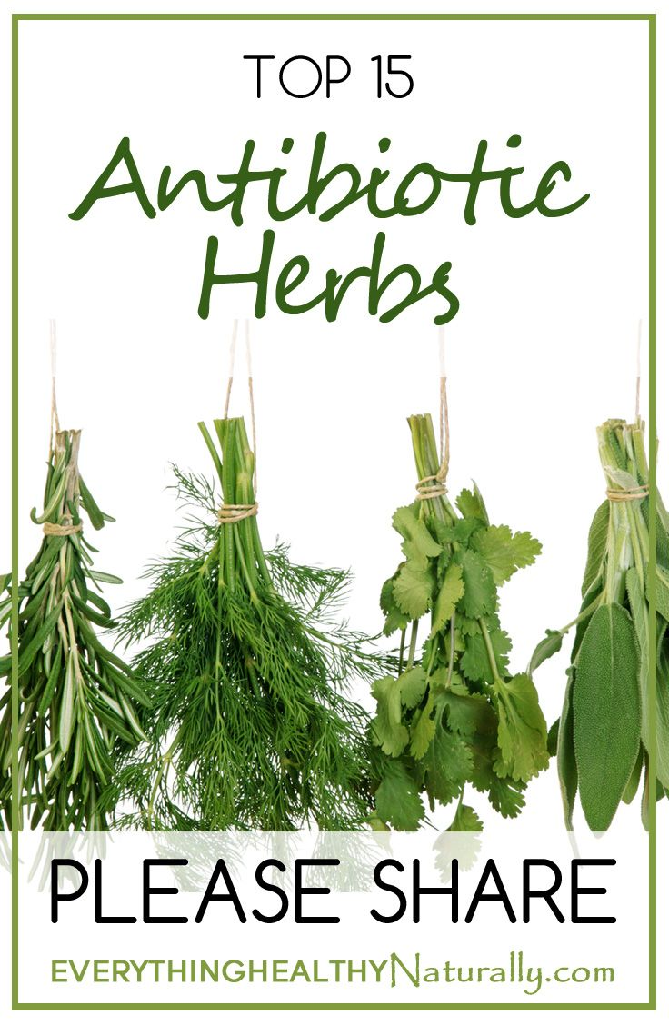 Top 15 Antibiotic Herbs www.greennutrilabs.com