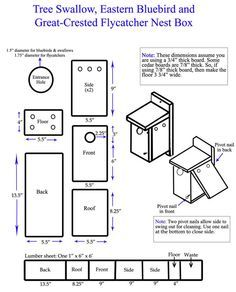 Blue bird house plans Or you can assemble Large shrub Eastern ...