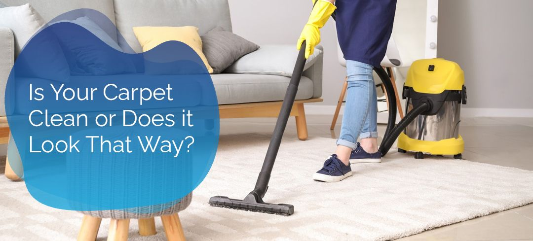 Despite all this, shouldn't you help but wonder just how clean your carpet is or how much dirt is hidden underneath. #carpetcleaning #professionalcarpetcleaning #londoncarpetcleaning