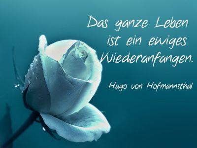 Rosenbild Mit Alles Gute Spruch Von Hugo Von Hofmannsthal