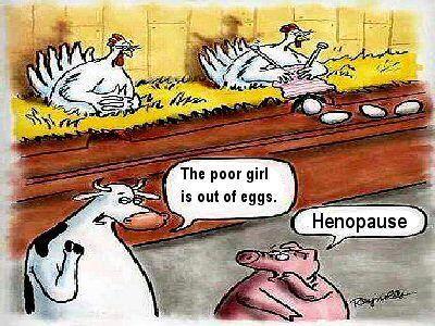 Henopause!