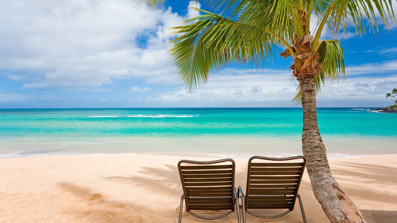 Strand Hd Palmen Sommer Sand Meer Auf Dem Wallpaper