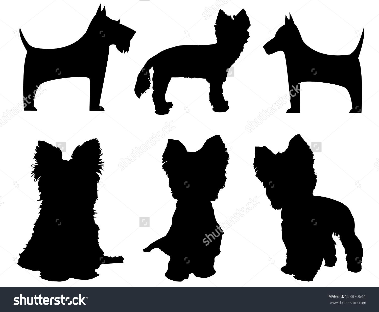 Small Dog Silhouettes (Yorkshire Terrier And Schnauzer) Stock ...