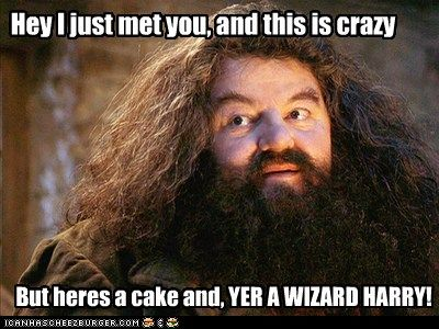 How Tall Is Hagrid Anyway Harry Potter Quiz Harry Potter Hagrid