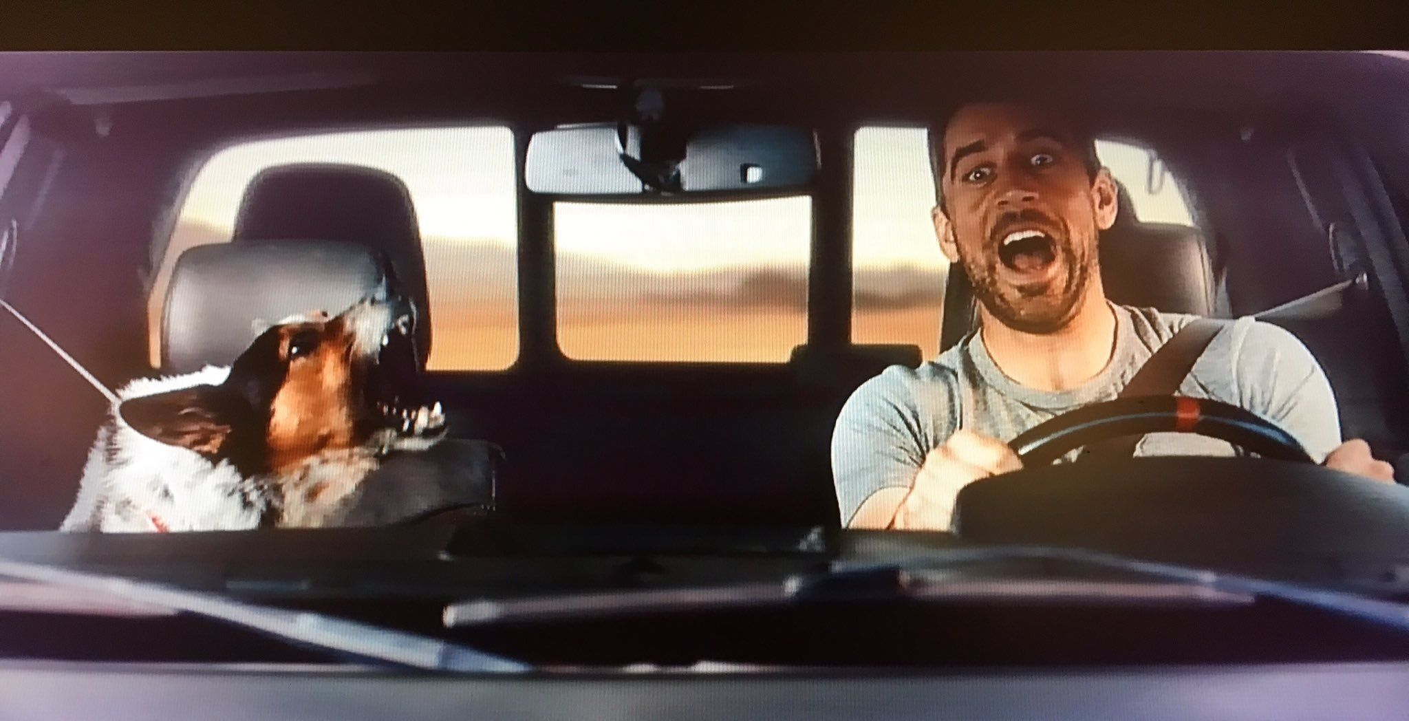 The State Farm Commercial Is So Cute I Laugh Every Time I See It Rodgers Green Bay Green Bay Packers Aaron Rodgers