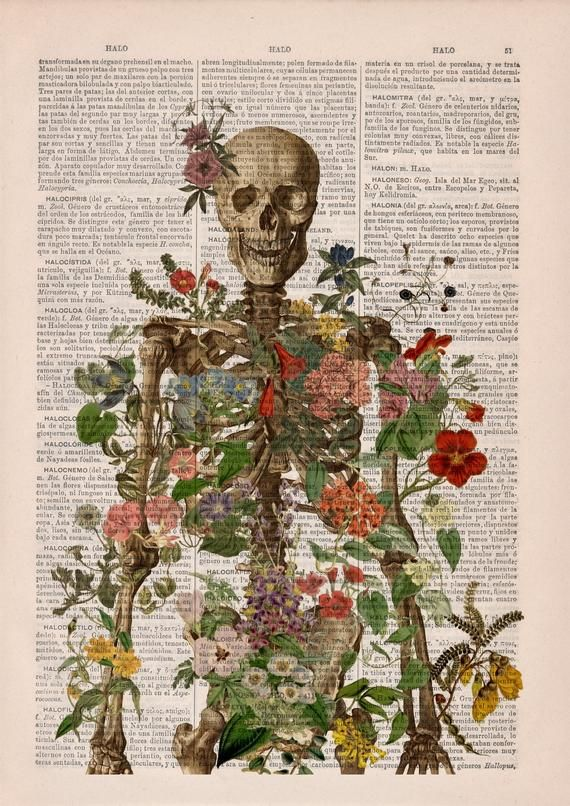 Doctor gift Anatomy Wall Art - Flower Skeleton - H