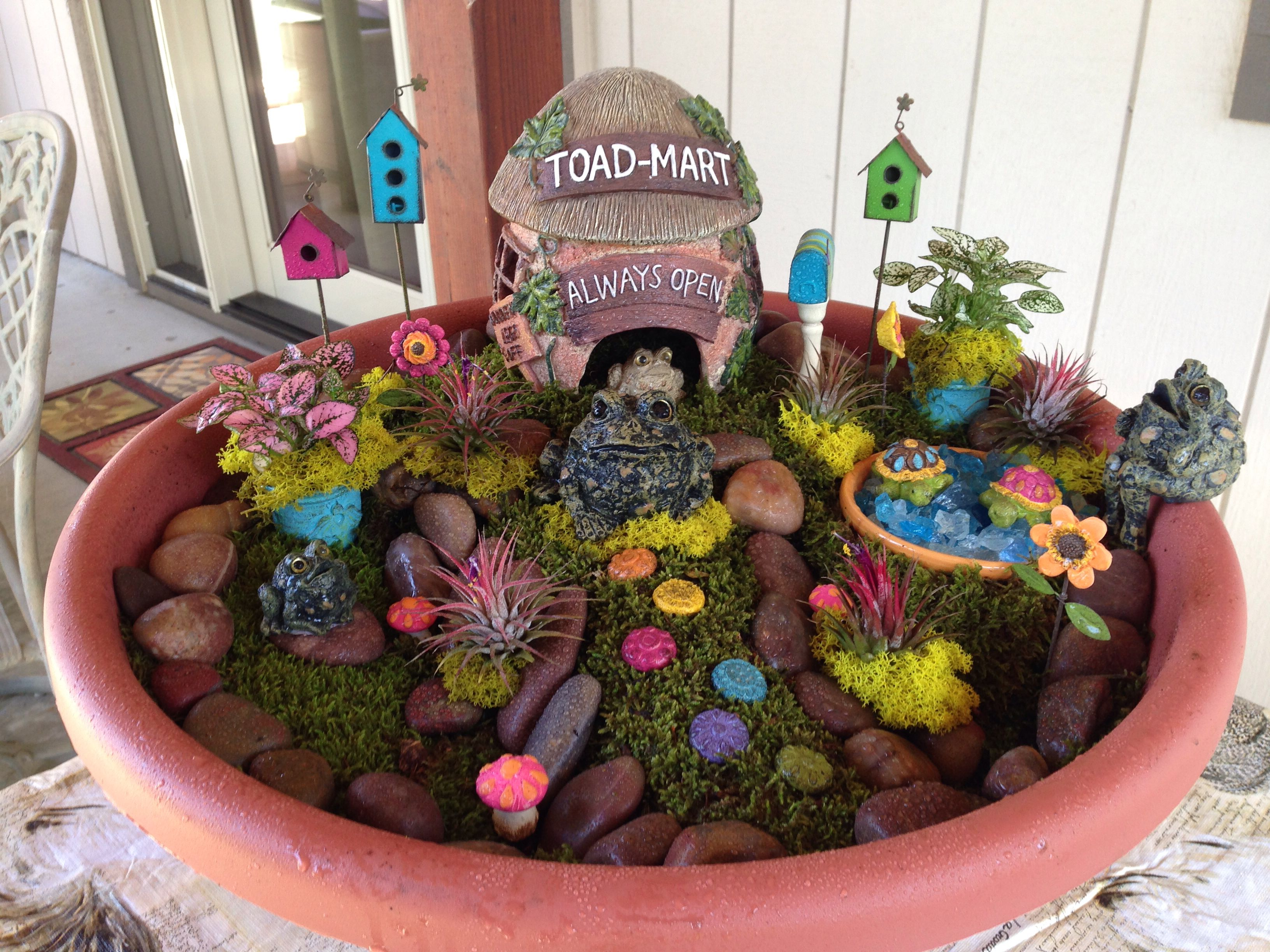 This is my outdoor frog house | Frog house, Fairy garden