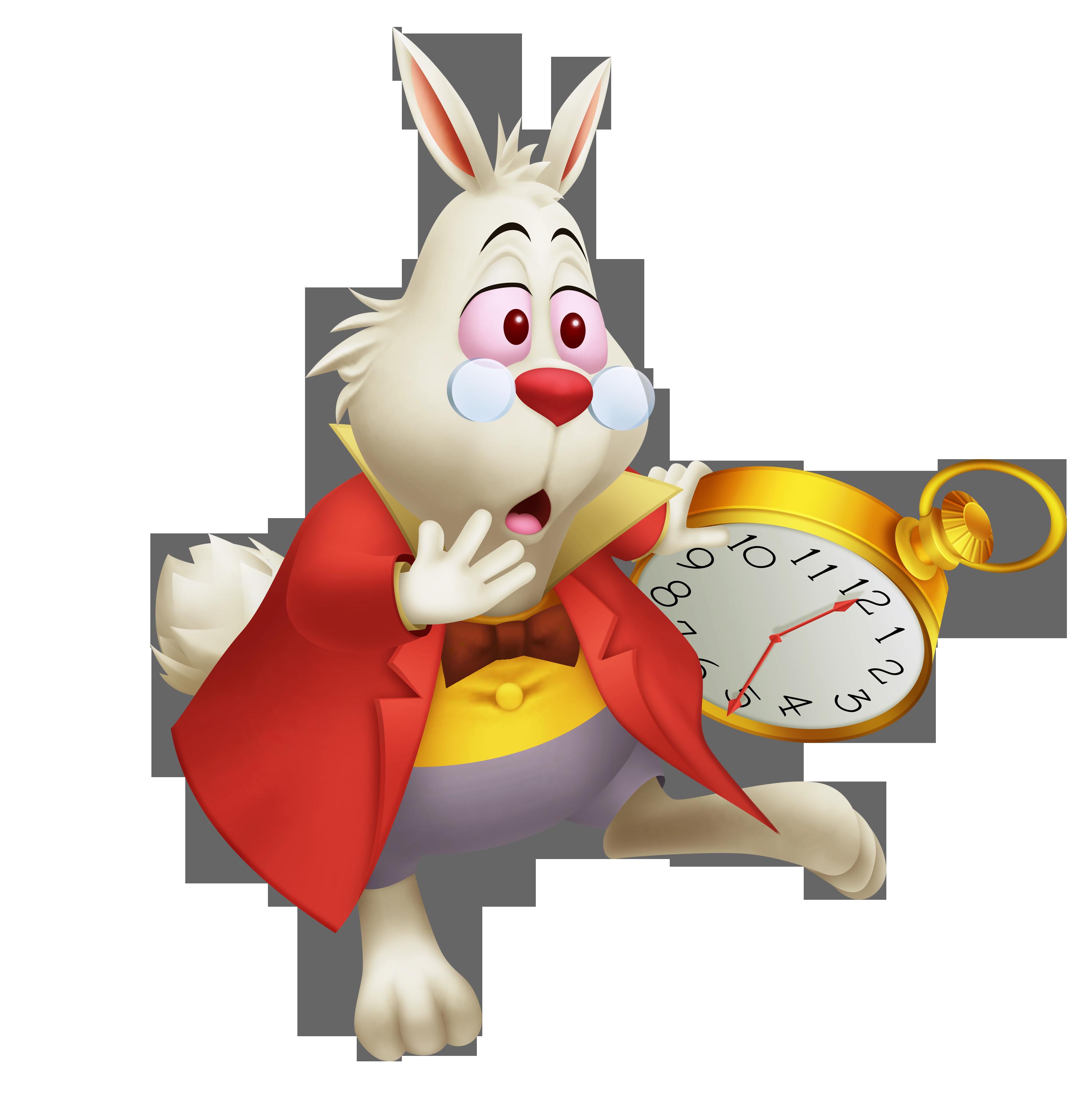 Toki The White Rabbit