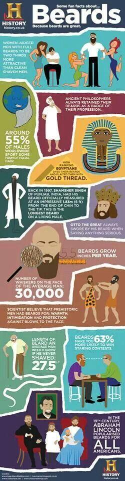 Fun facts   Beard no mustache Beard styles Beard humor