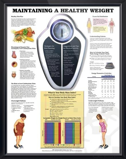 Maintaining a Healthy Weight Chart 20x26 | Healthy weight ...