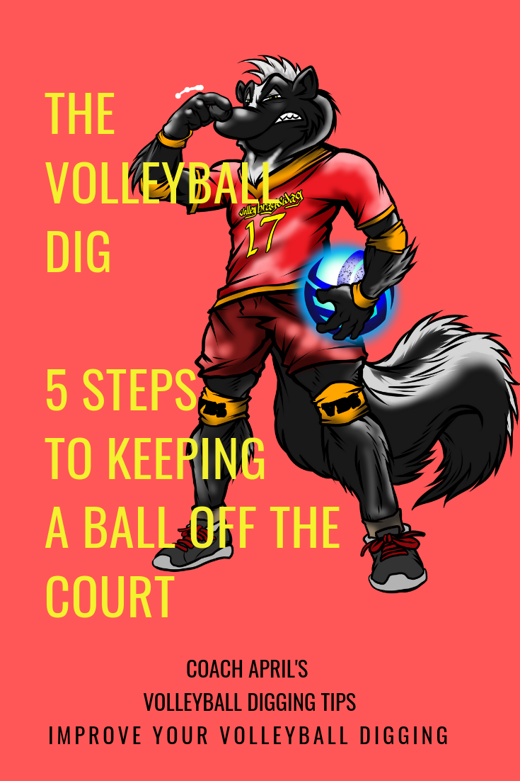 The Volleyball Dig What Is It When To Do It And How To Dig A Ball Volleyball Volleyball Tips Volleyball Skills