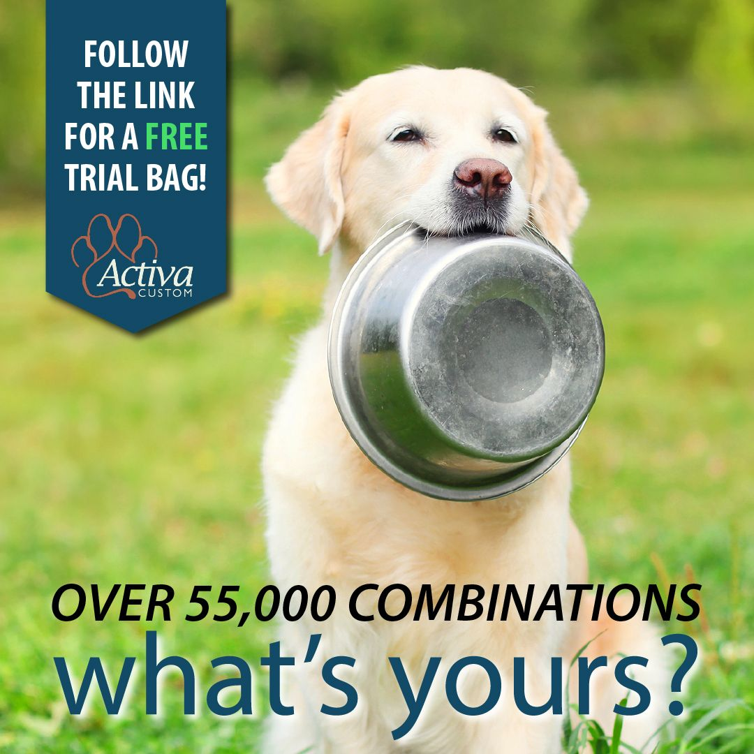 Introducing The Latest Innovation In Pet Food With Activa Custom