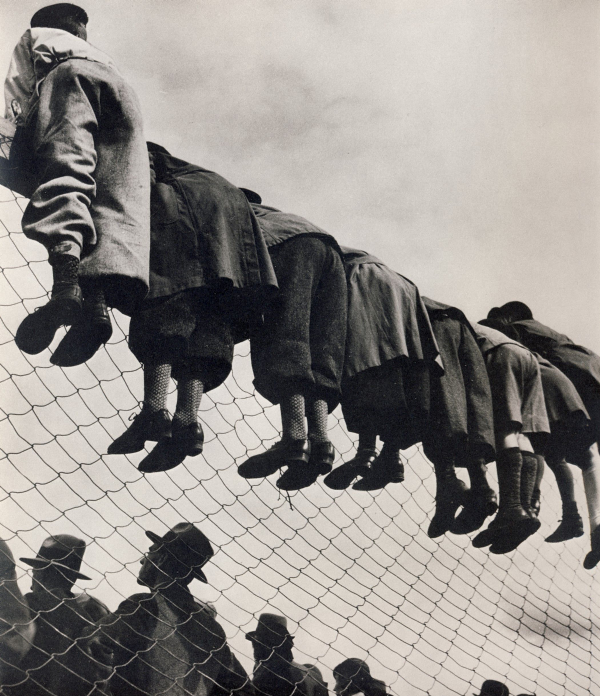 At the dog show, youths hanging on the fence trying to get a glimpse, Stockholm, 1934, By Emil Heilborn.