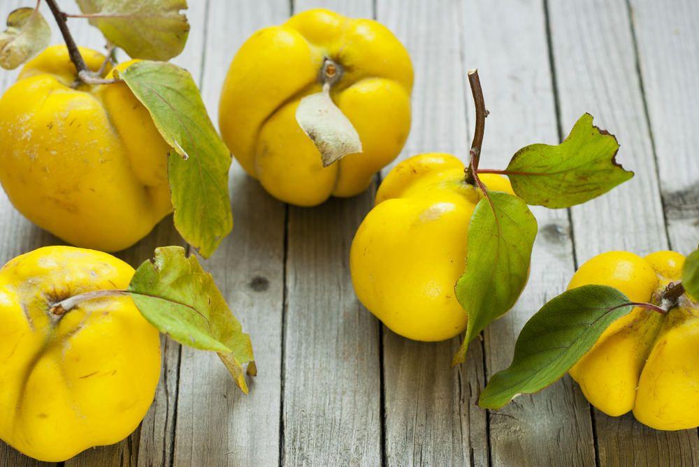 Le coing fait-il grossir ?   Fruits et légumes, Recette
