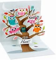 Trinkets Hoot! Owl Pop-Up Gift Card