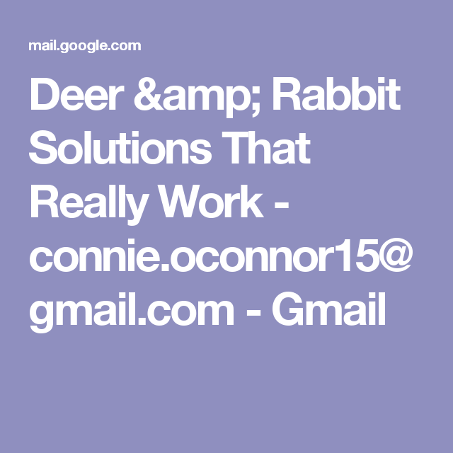 Deer & Rabbit Solutions That Really Work - connie ...