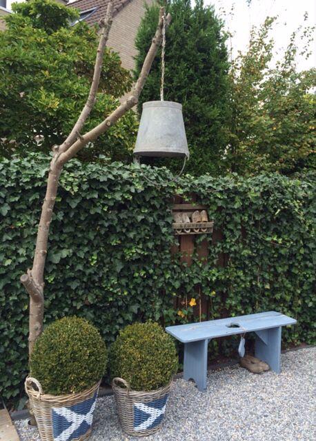 Leuk voor in de tuin, of binnen!