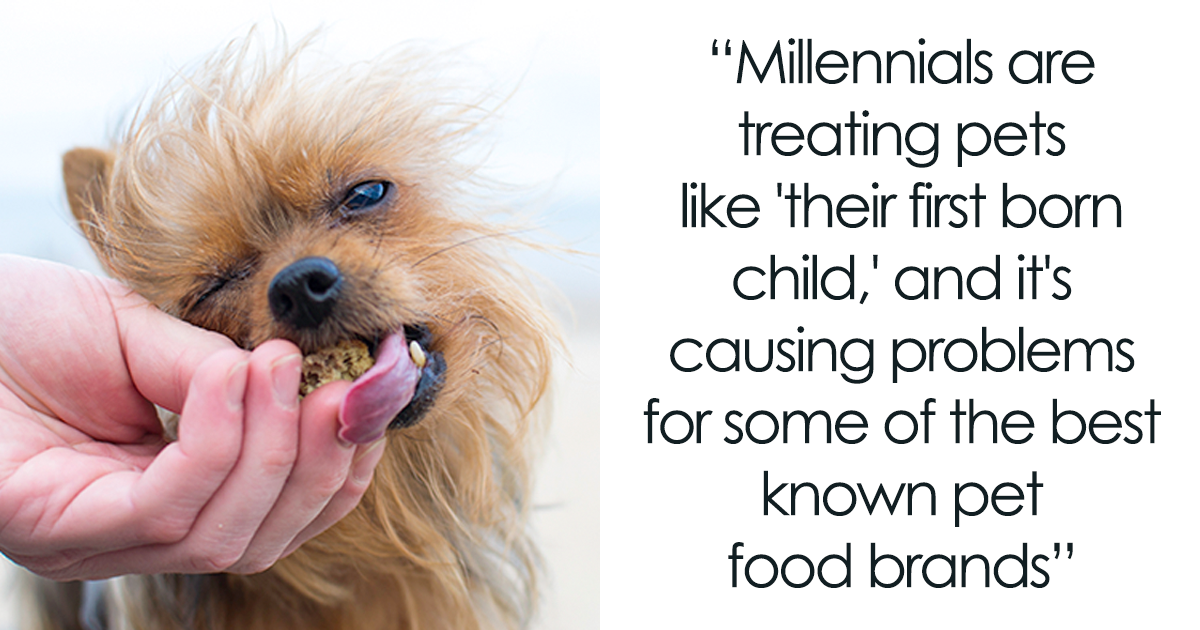Millennials Are Blamed For Ruining Pet Food Industry So They Respond By Explaining Why It S Not Their Fault Food Animals Food Industry Millennials