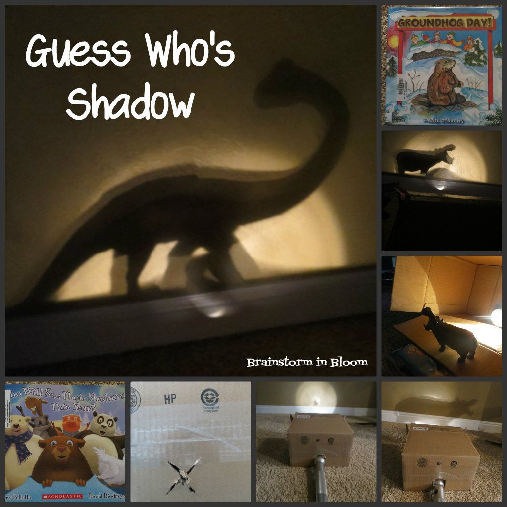 Brainstorm In Bloom Guess Who S Shadow Game Would Be
