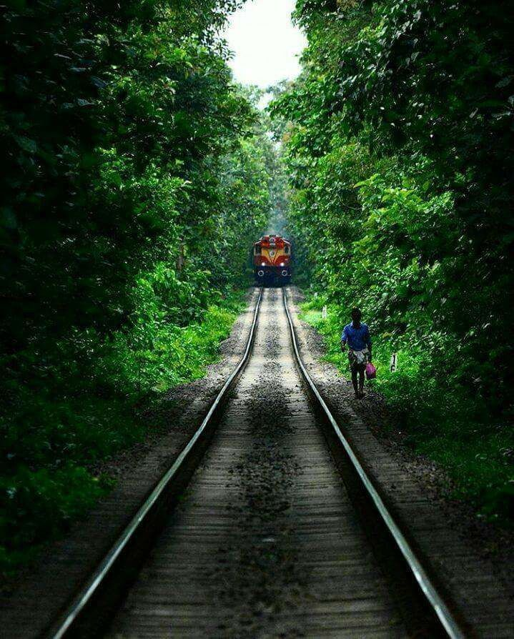 Pin by Bharat Grover on All about trains Kerala travel